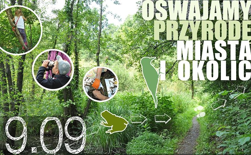 Rodzinny spacer po Lesie Borkowskim